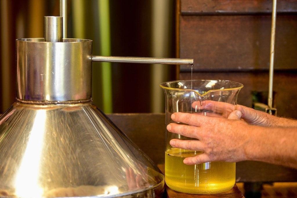 distilled bridestowe lavender oil